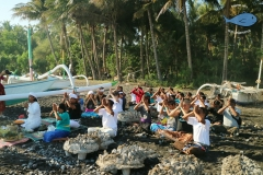 north bali reef conservation program, marine conservation program5